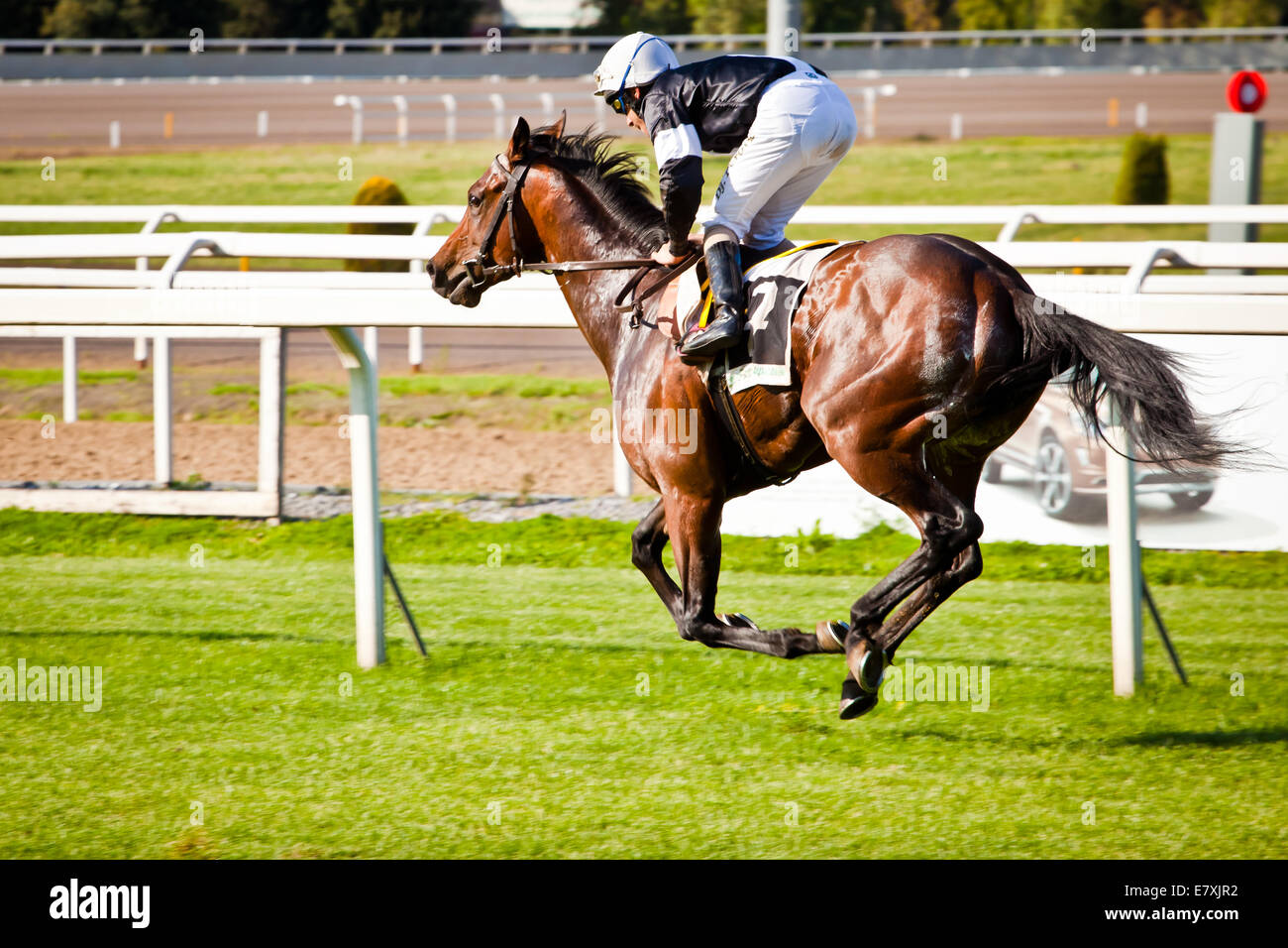 Rome, Italy, 01 May, 2014: Jockey rides horse during race one. Stock Photo