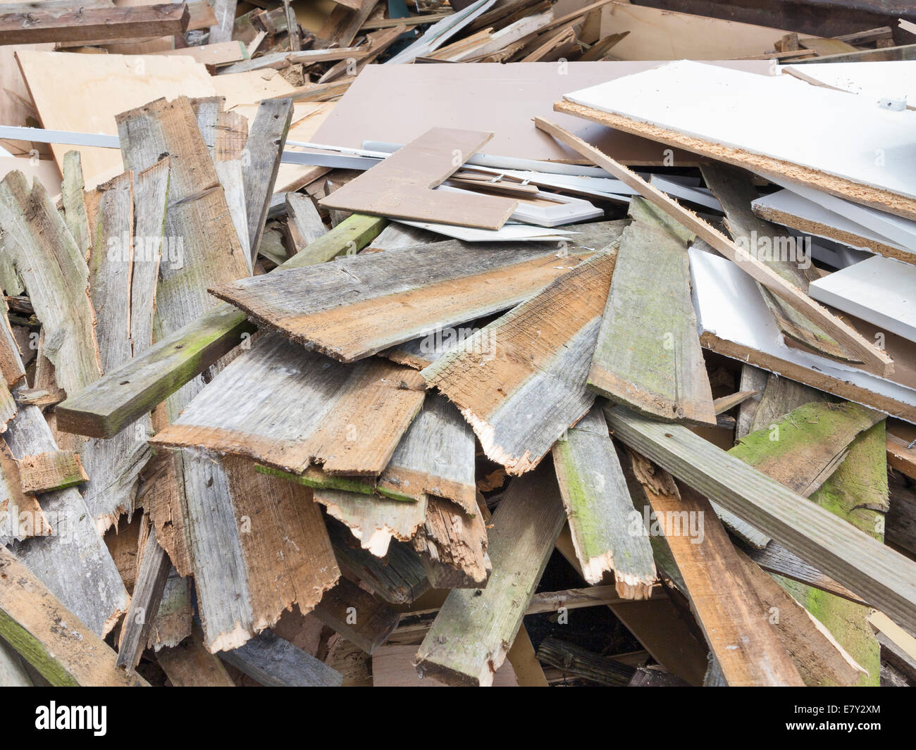 Local authority public recycling facility for waste wood, UK - Stock Image
