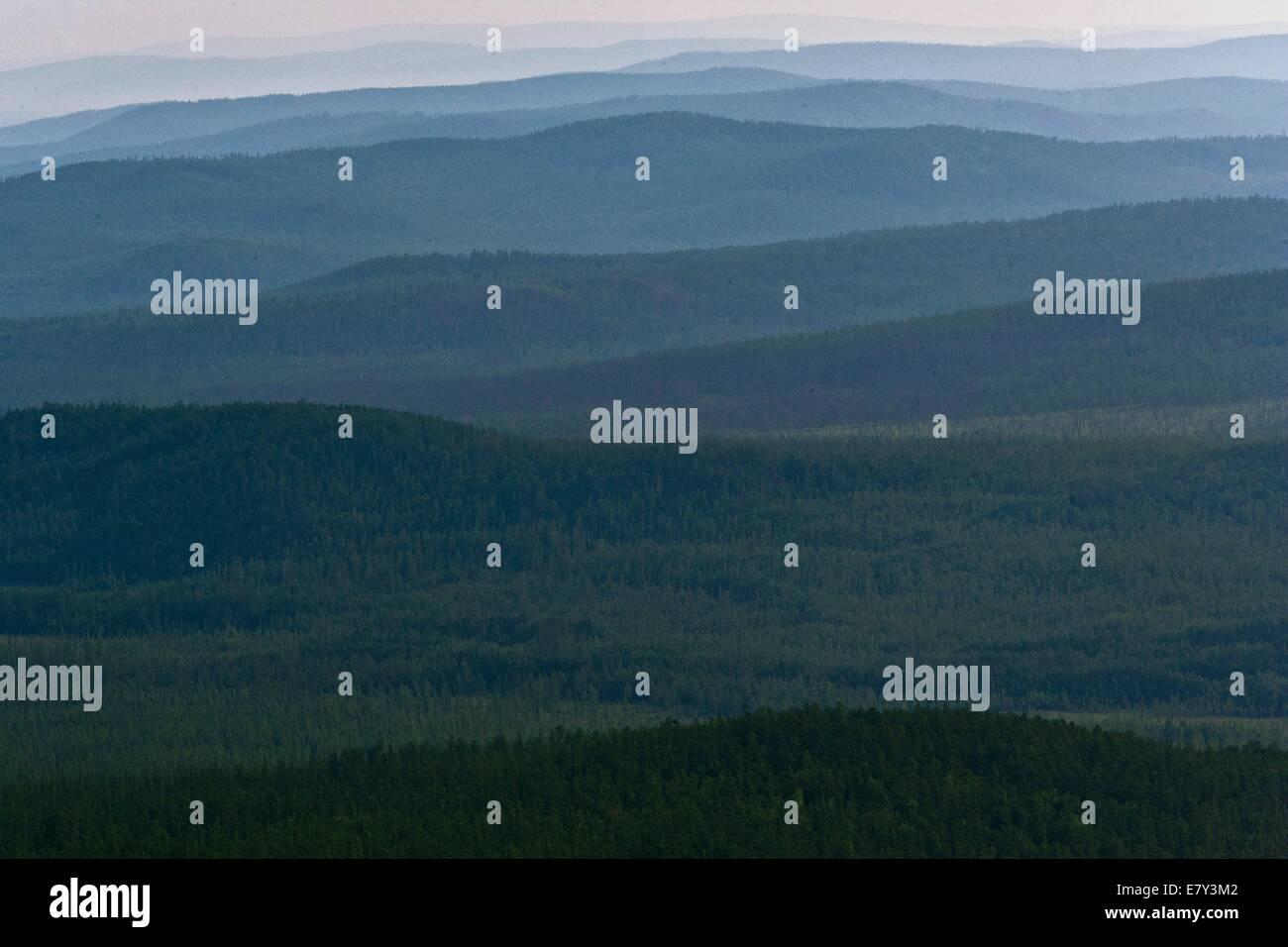 Russia, Zabaykalsky Krai, Mogochinsky District. Taiga. - Stock Image