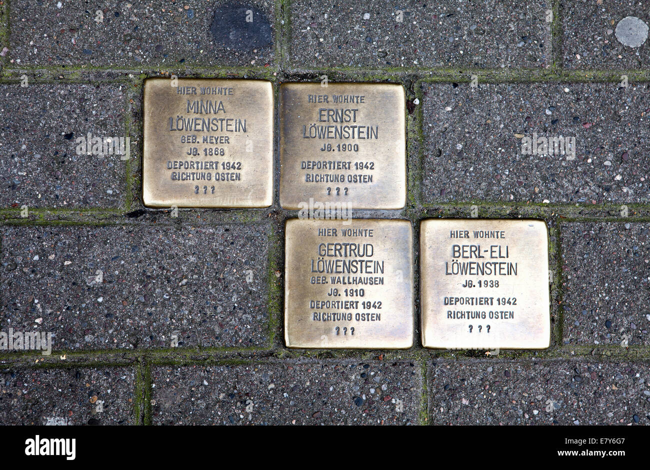 Stolpersteine or stumbling blocks, memorial plaques to commemorate Jewish victims of Nazism in Hoexter, North Rhine - Stock Image