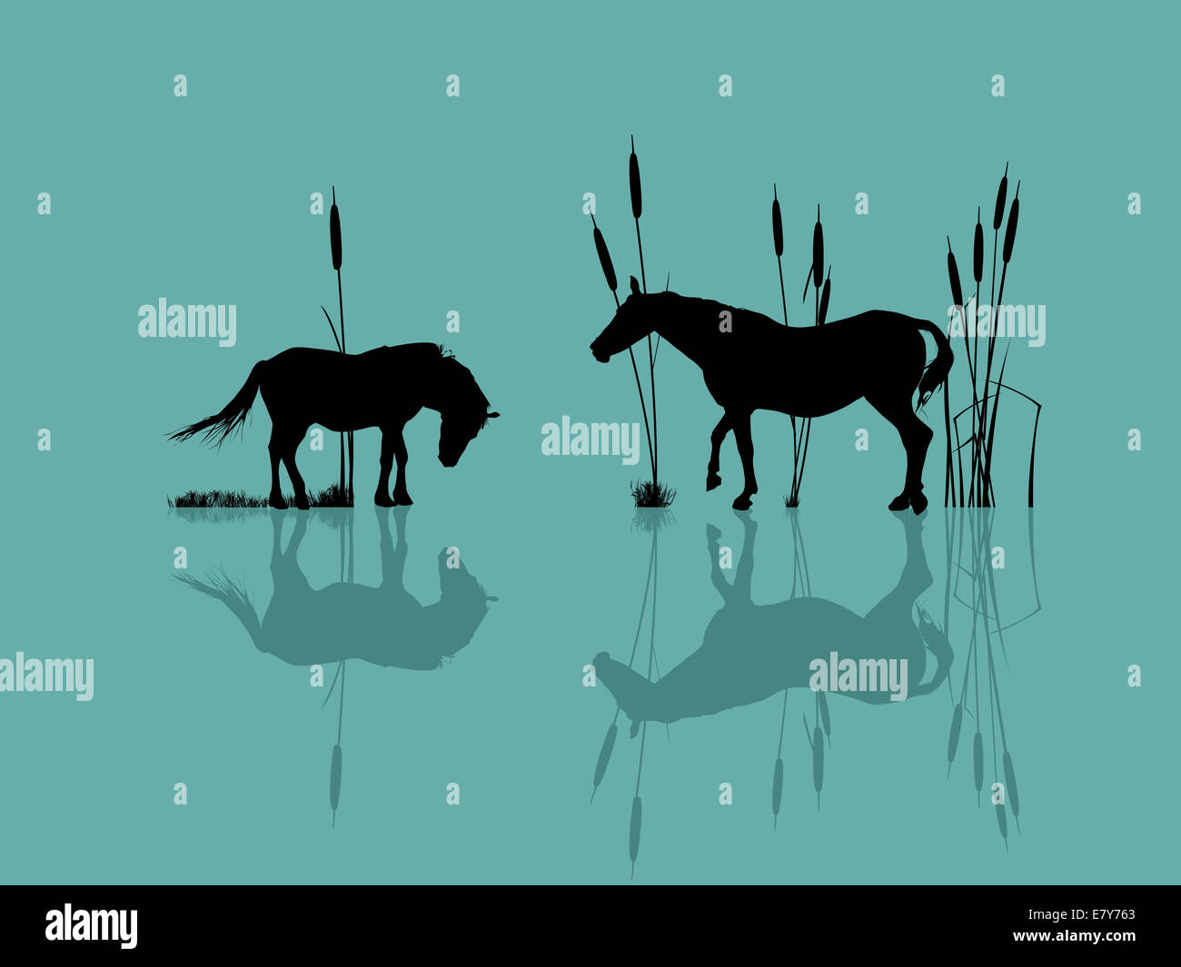 Background romantic illustration with horses at the water - Stock Image