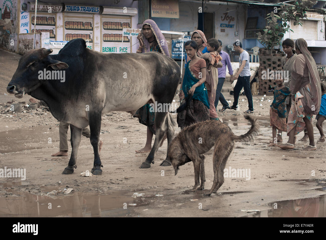 Walking women in the early morning after the passage of the monsoon - Stock Image