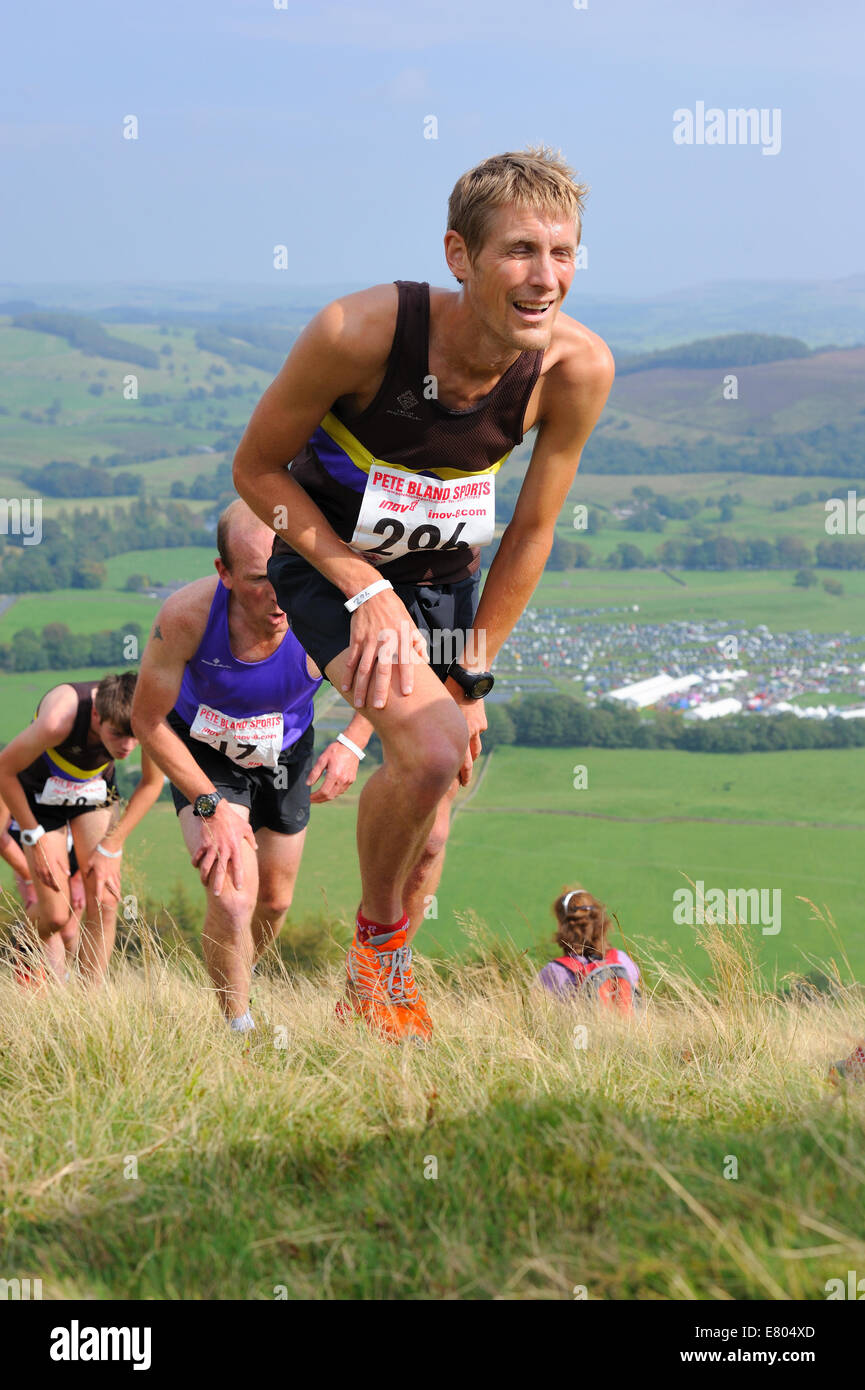Runners in a Fell race climbing a steep hill - Stock Image