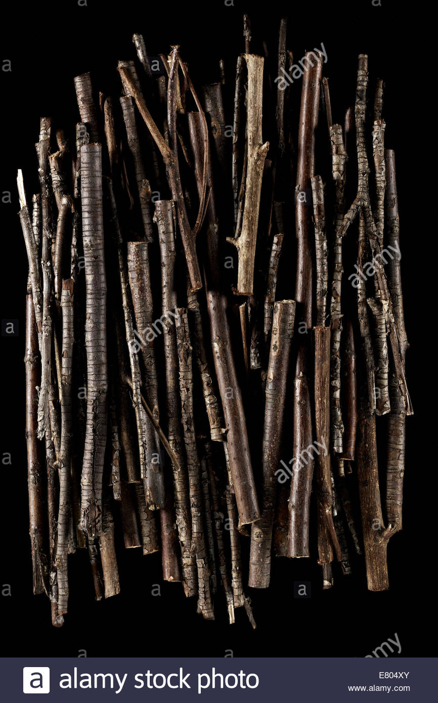 Stick and Twigs background full of textures on black background - Stock Image
