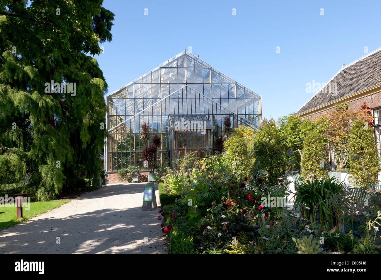 Tropical greenhouse in the Hortus Botanicus in Leiden, Holland - Stock Image