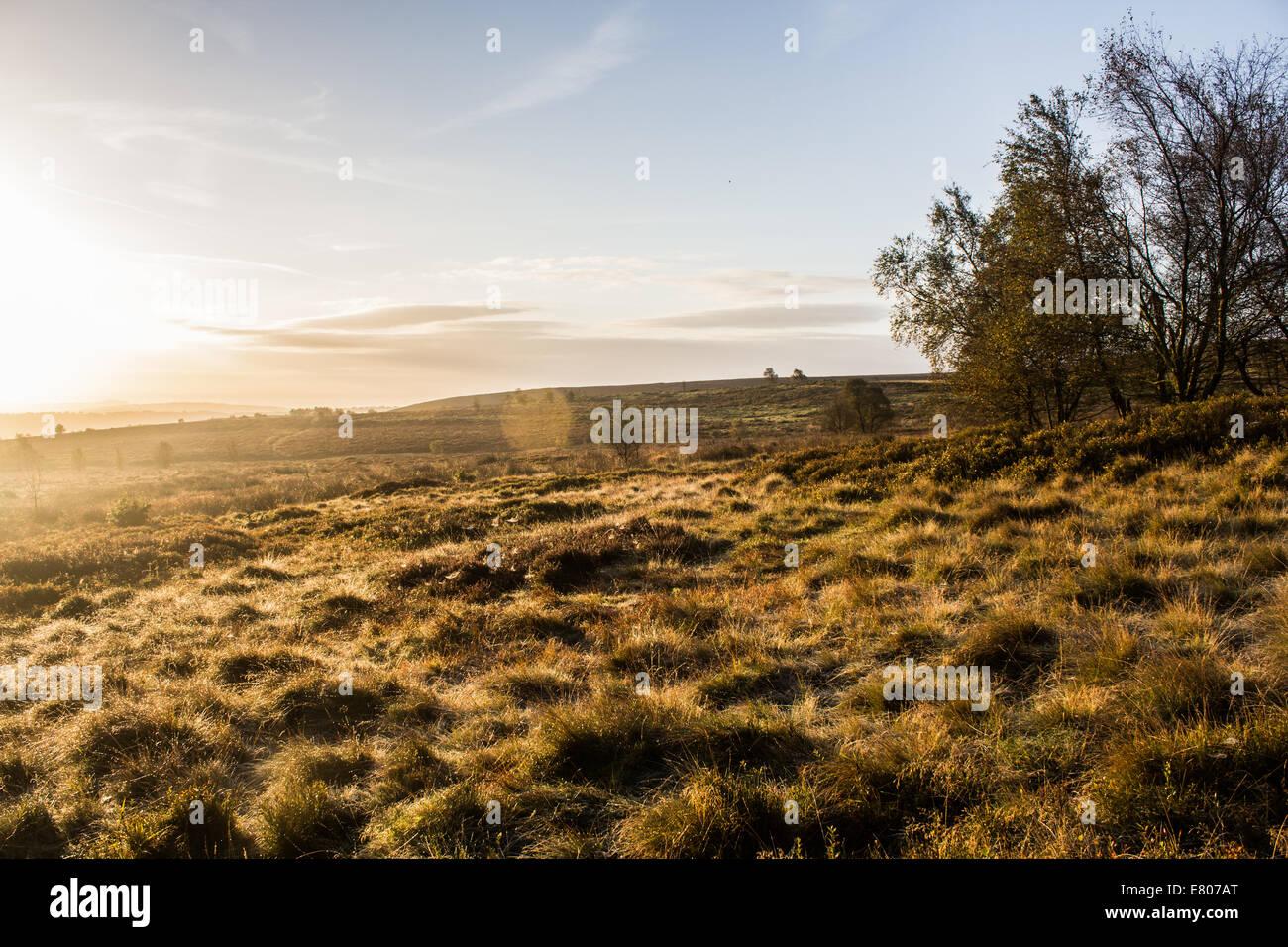 Peak District at sunrise - Stock Image