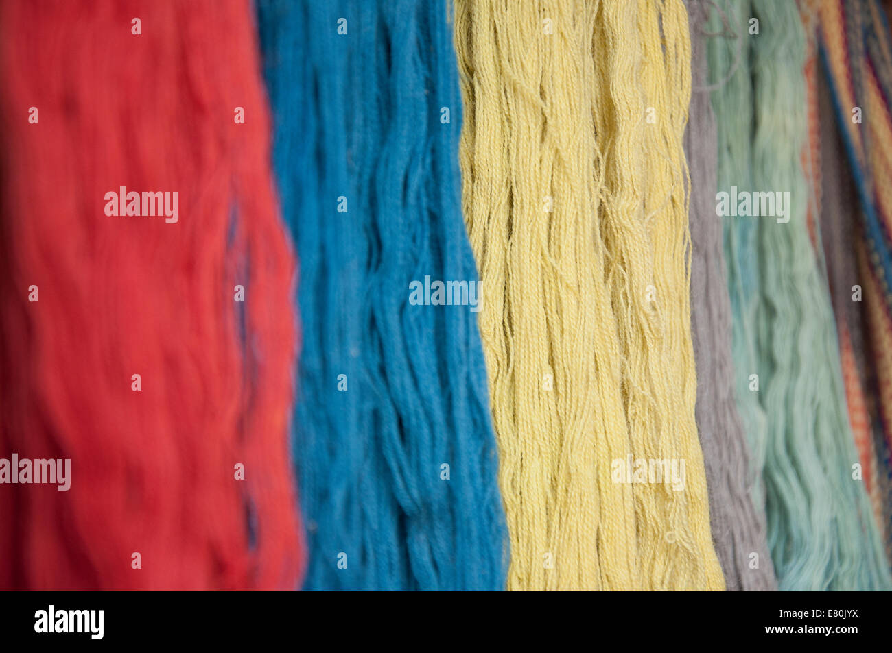 Hanging naturally dyed wool, focused on yellow skeins - Stock Image