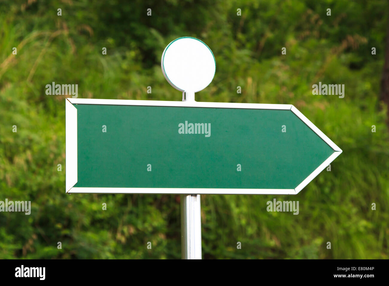 Green, blank, empty sign board with right arrow direction and little circular shape in forest. - Stock Image