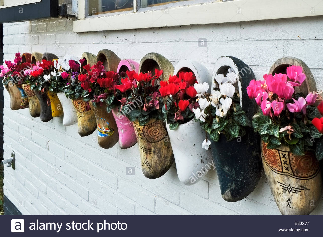 Wooden shoes used as flower pots adorn the wall of a shop on the Dutch island of Marken. - Stock Image