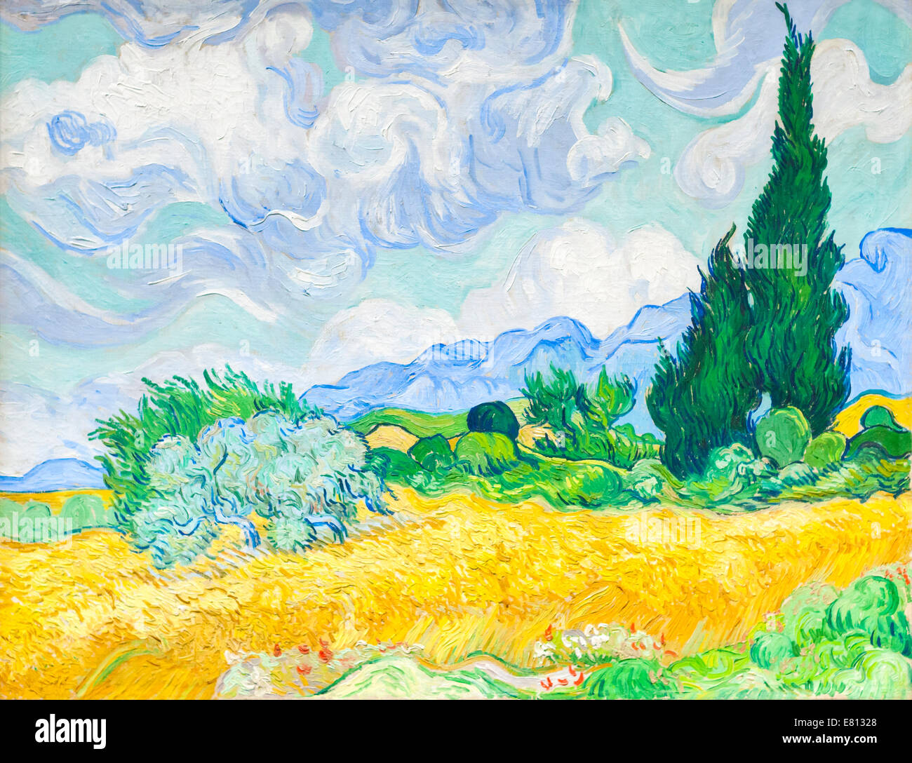 A wheatfield with cypresses, Vincent van Gogh - Stock Image