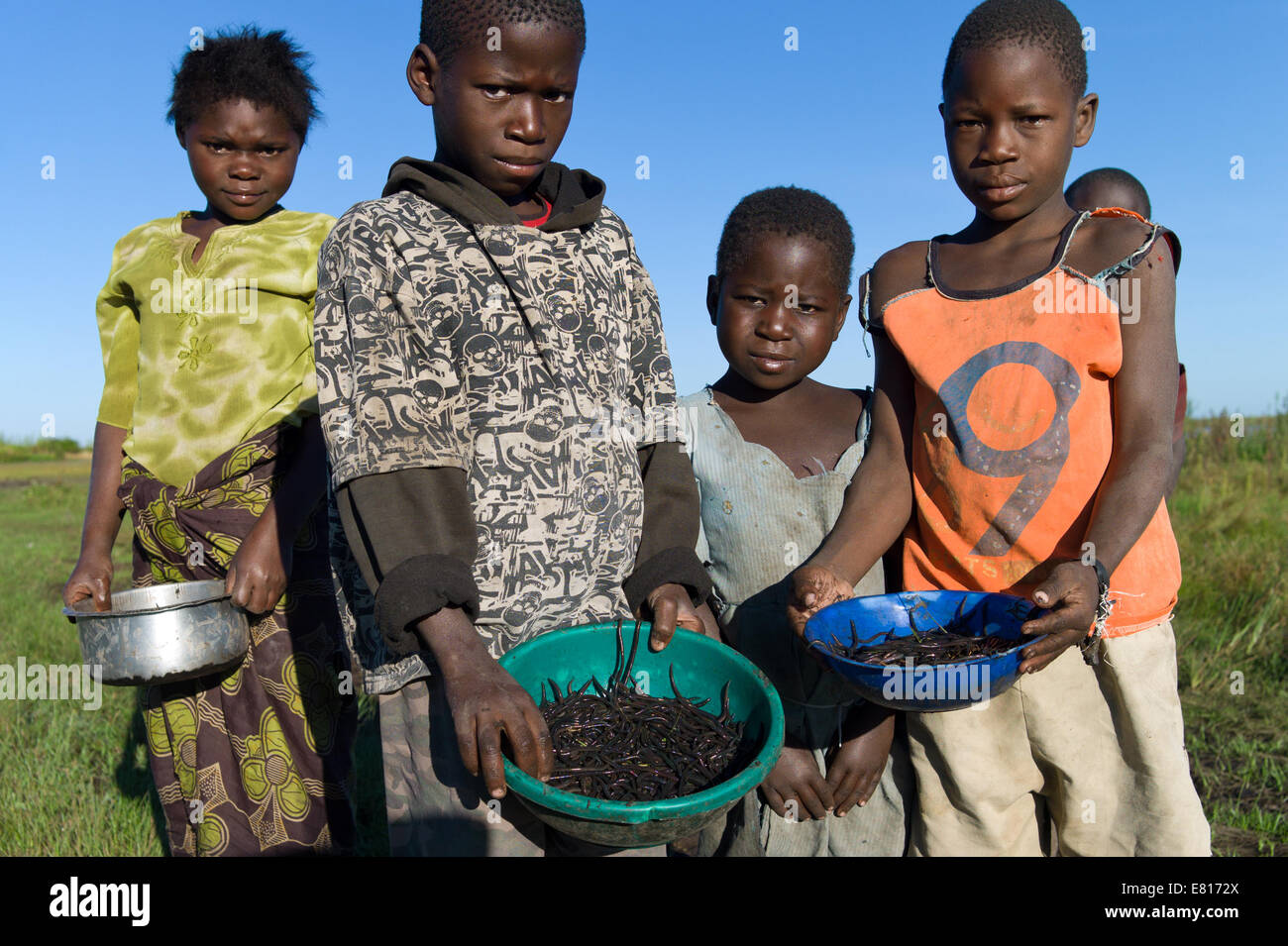 Kids dig up worms to be used for fishing in Bangweulu Wetlands, Zambia Stock Photo