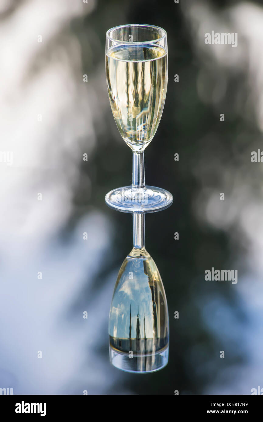 A glass of champagne reflects in a table at a wedding celebration - Stock Image