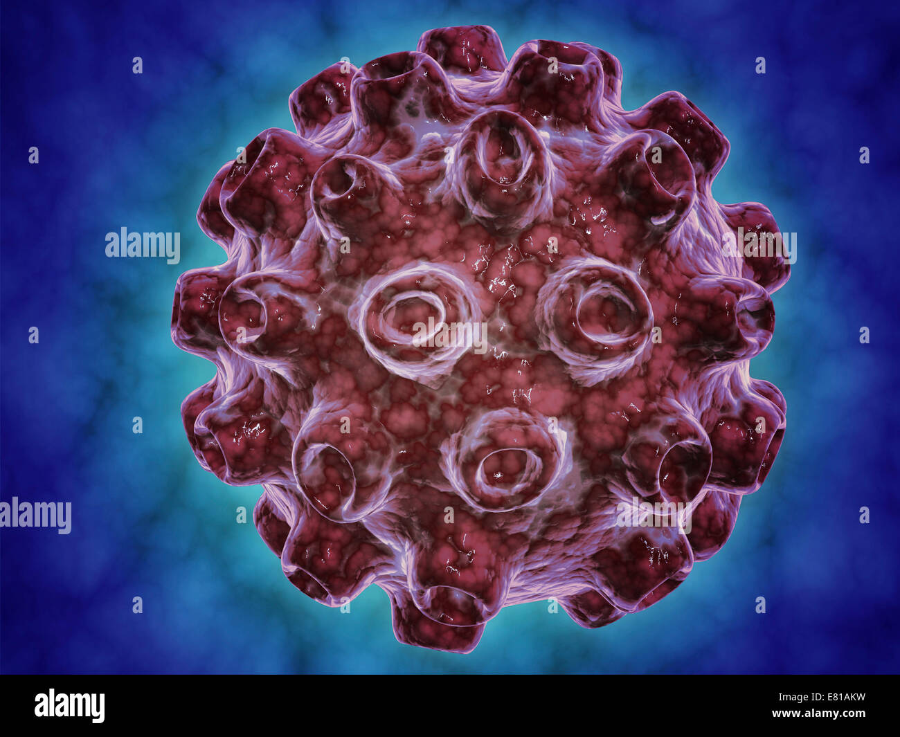 Conceptual image of Encephalitis. Encephalitis can cause flu-like symptoms, such as a fever or severe headaches. - Stock Image