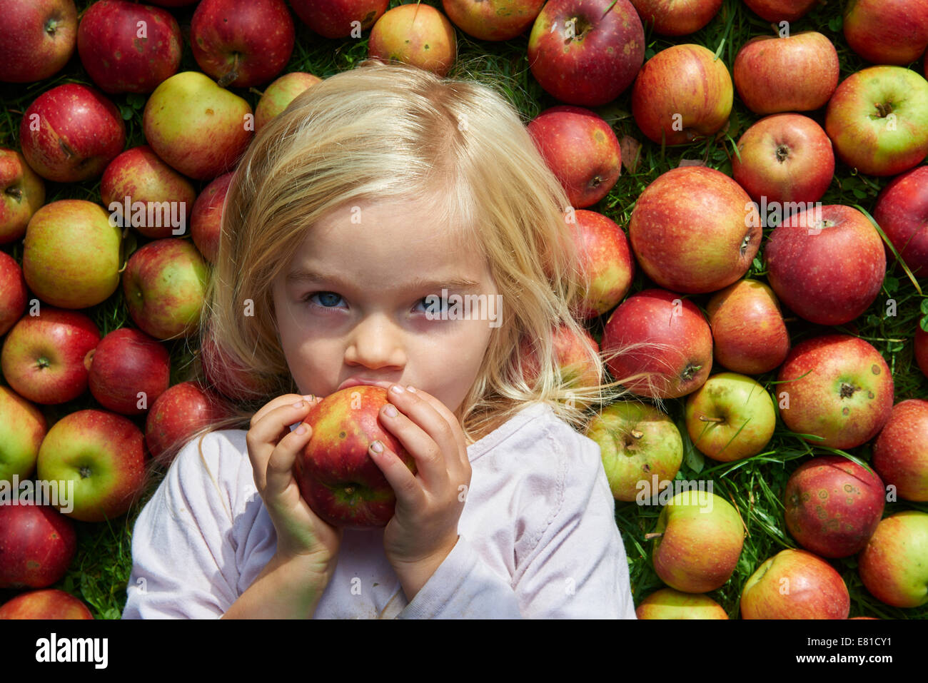 Portrait of child blond young girl lying and eating on the grass with apples background, lies Stock Photo
