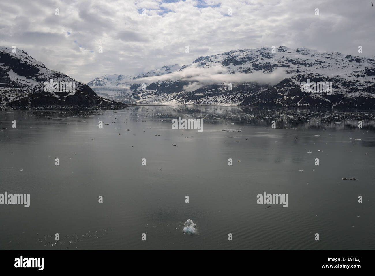 Ice bergs and glaciers in Glacier Bay, Alaska, USA.  Water and ice landscapes with scenic views and close up water - Stock Image