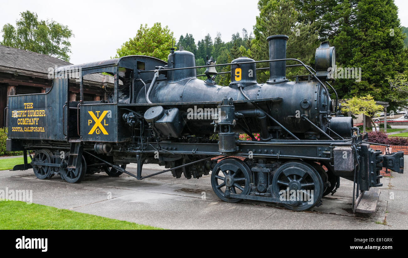 California, Scotia, Pacific Lumber Company Museum, Heisler geared steam locomotive - Stock Image