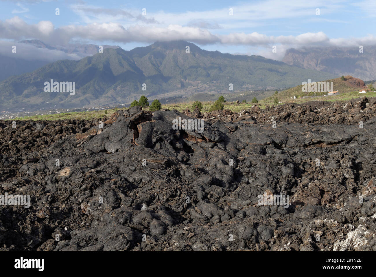 Natural monument of Tubo de Volcánico Todoque near Las Mancha, lava flow from 1949, La Palma, Canary Islands, Spain Stock Photo