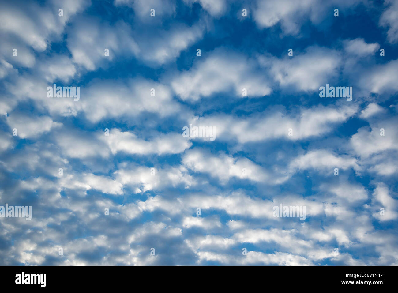 Cirrocumulus clouds, small fluffy clouds, Germany - Stock Image
