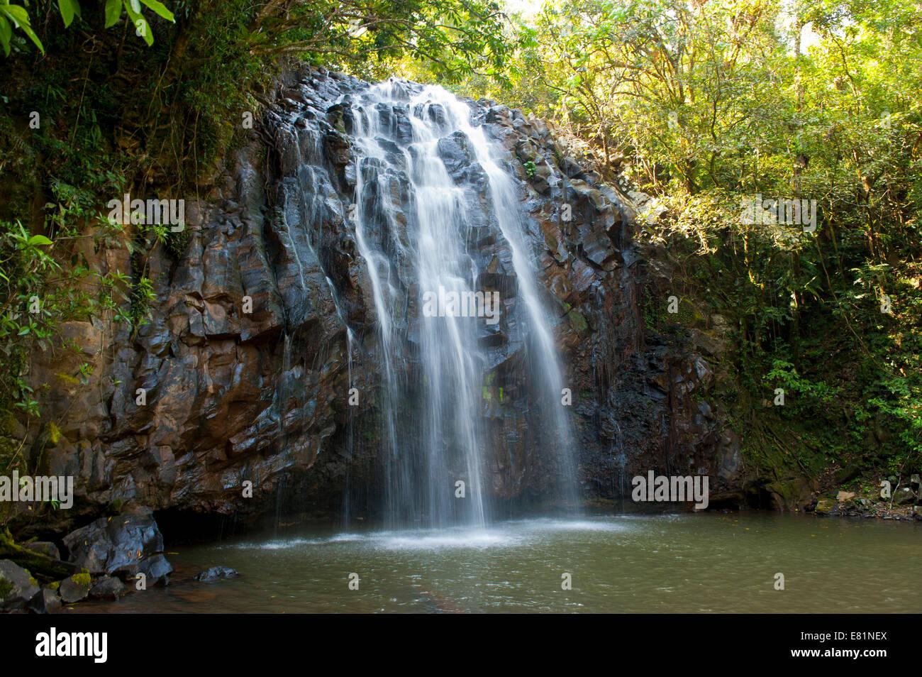 Ellinjaa Falls, Atherton Tableland, Queensland, Australia - Stock Image