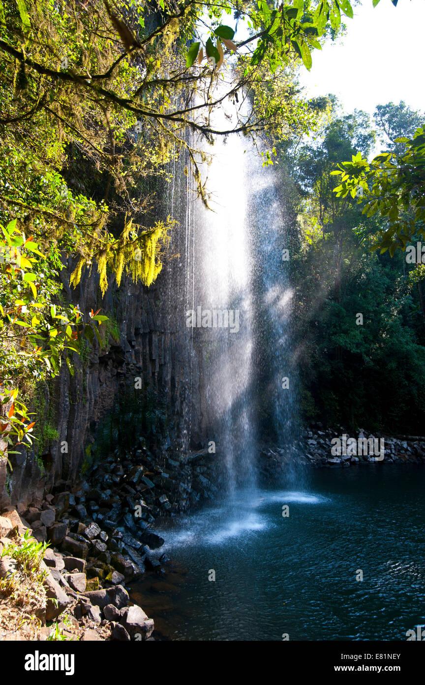Millaa Millaa Falls, Atherton Tableland, Queensland, Australia - Stock Image