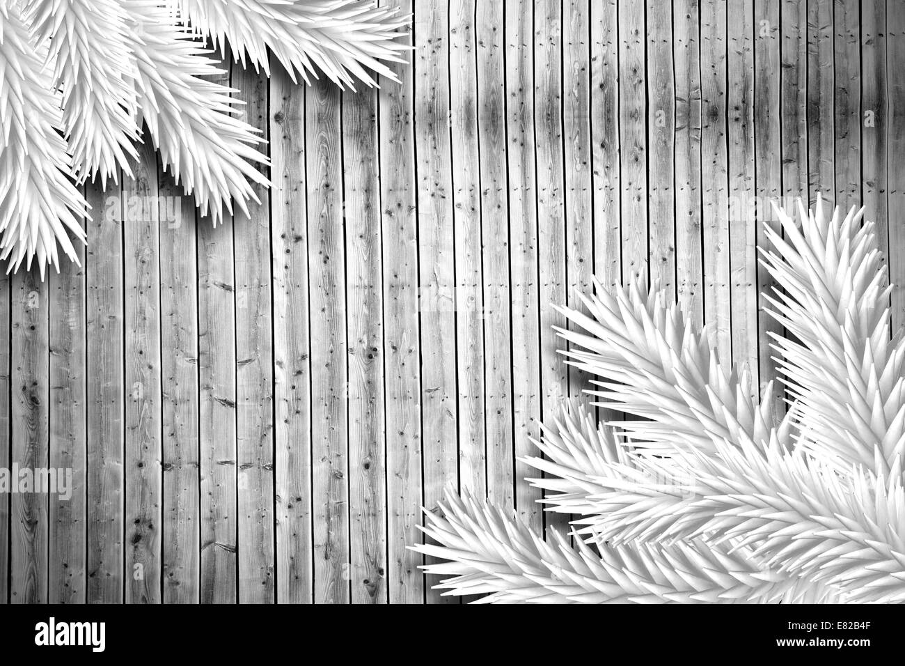 Fir branches on wooden planks - Stock Image