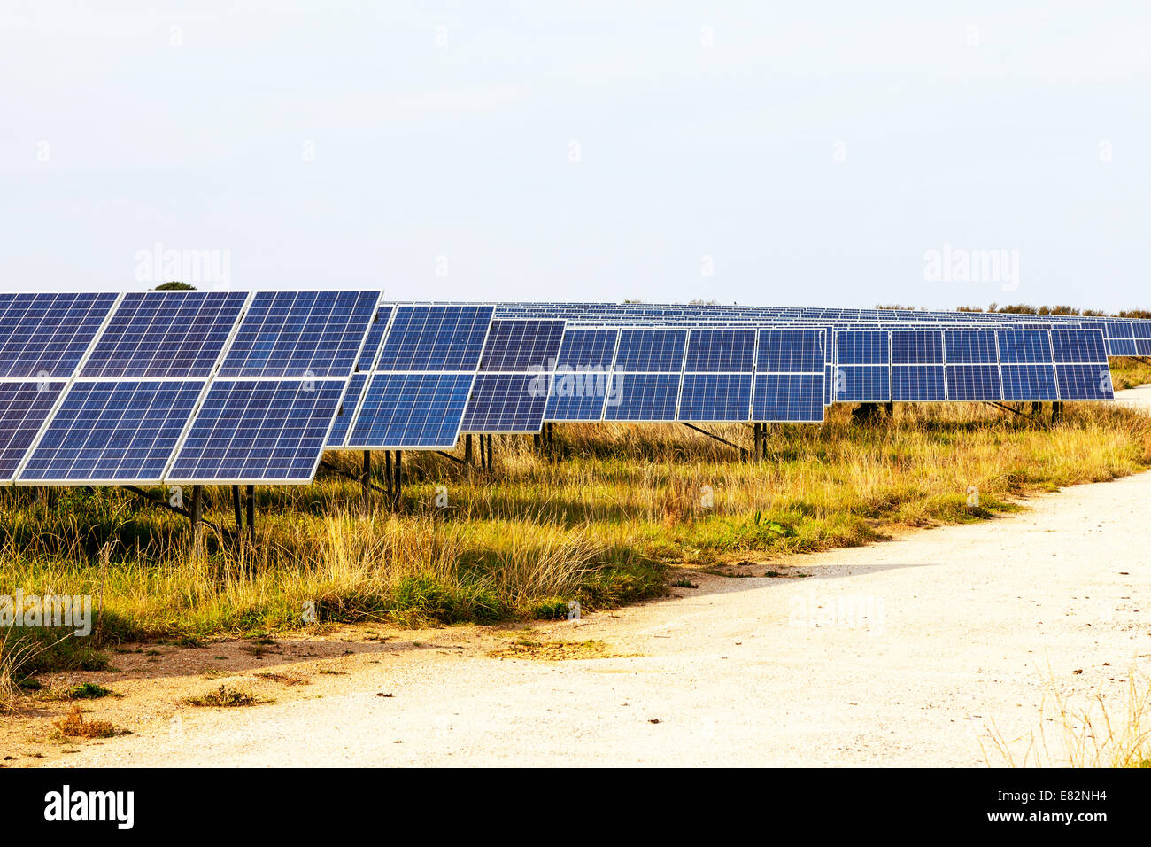 Solar panel panels farm field full Hayle Cornwall Cornish west country typical dramatic electric electricity generators - Stock Image