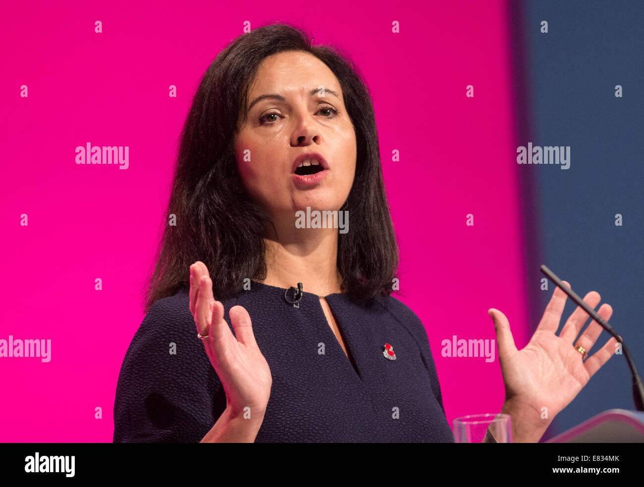 Caroline Flint-MP for the Dow Valley-Shadow secretary of state for communities and local Government - Stock Image
