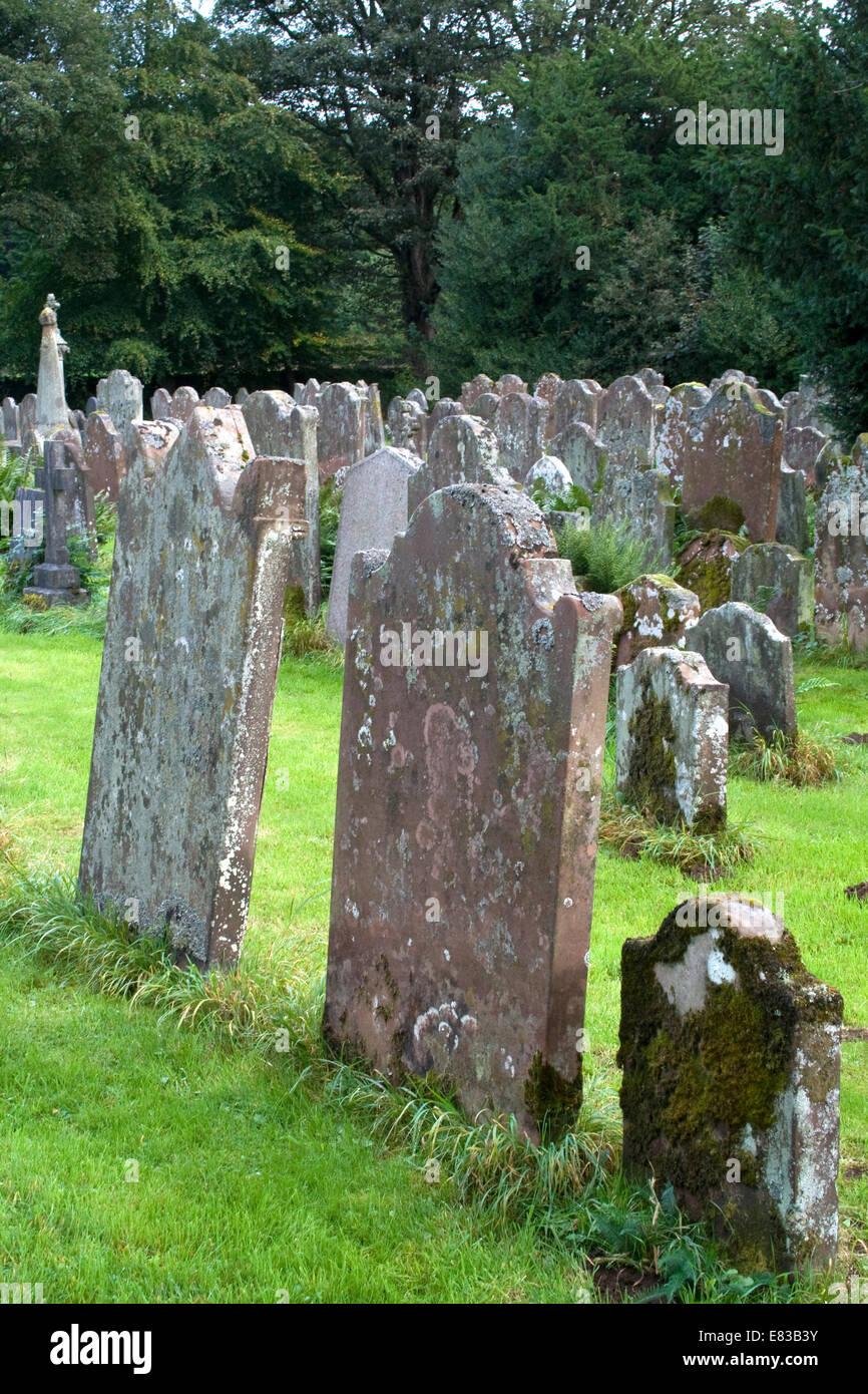 lichen covered gravestones - Stock Image