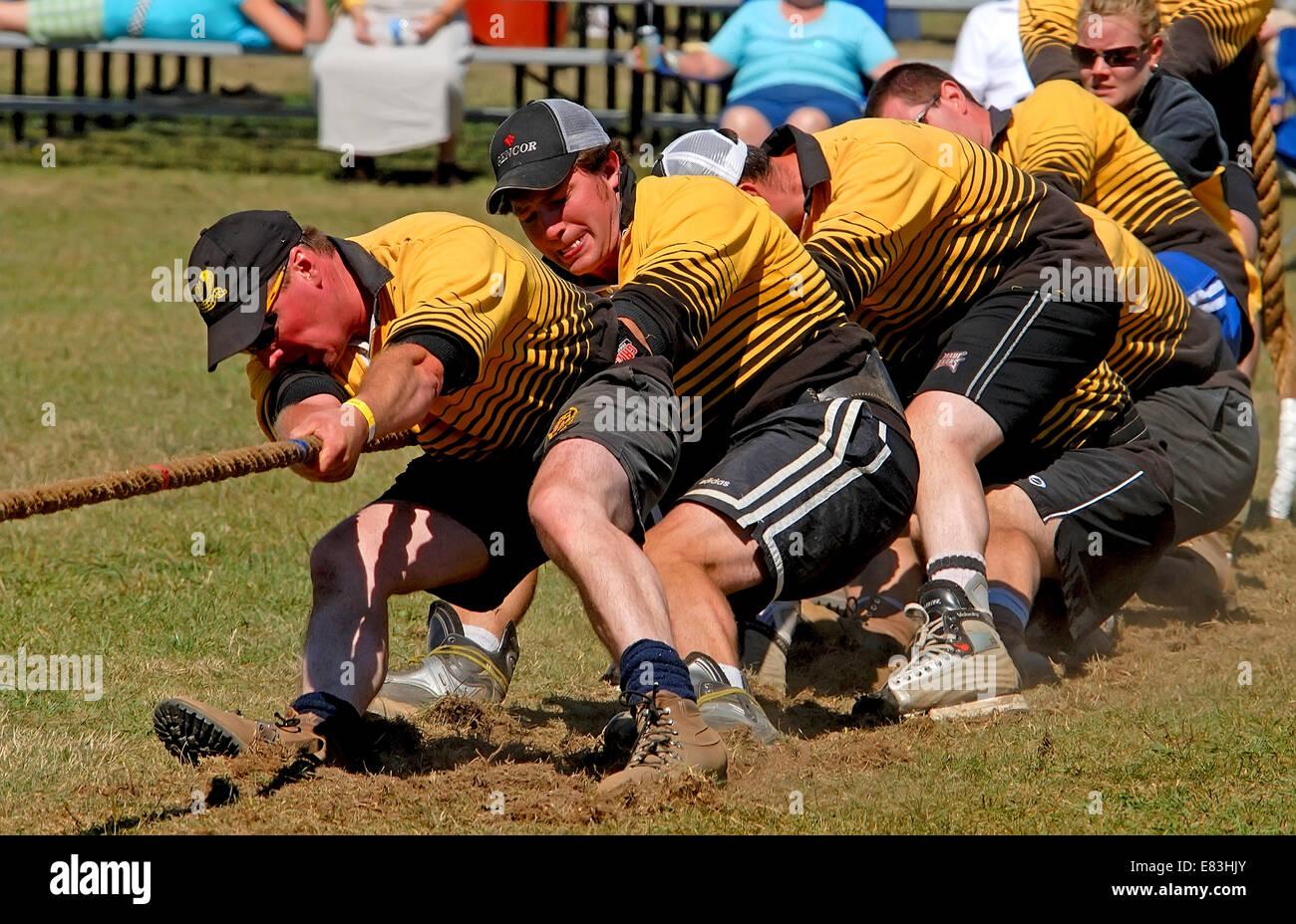 Tug-of-war, Team Sport - Stock Image