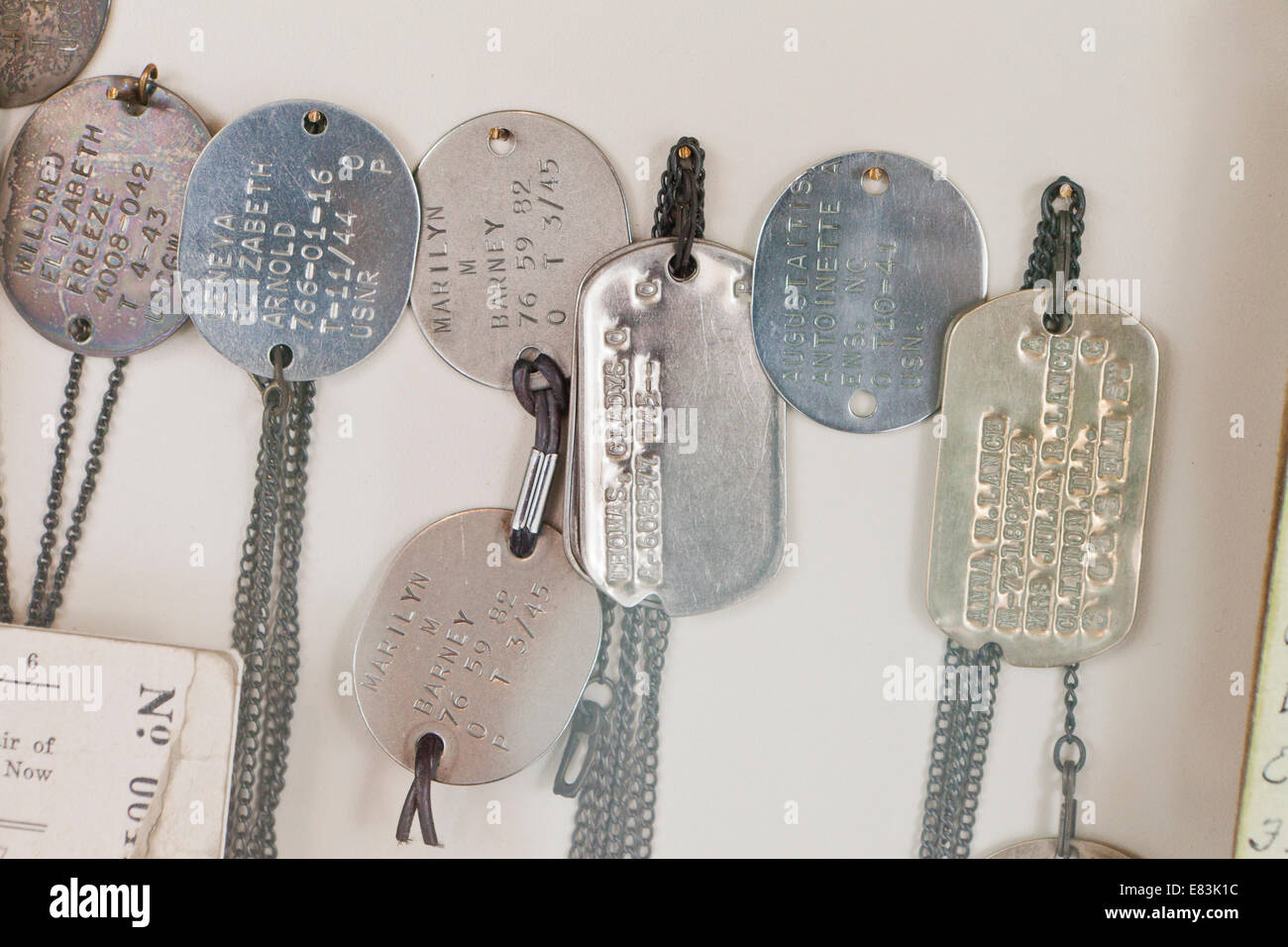 Female US military dog tags - USA - Stock Image