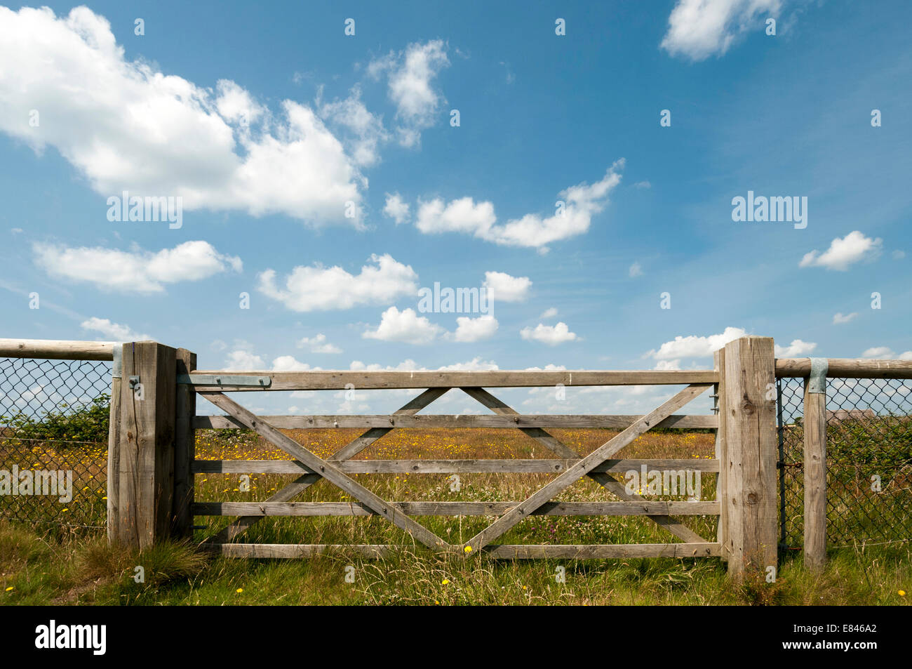 wooden five bar gate - Stock Image