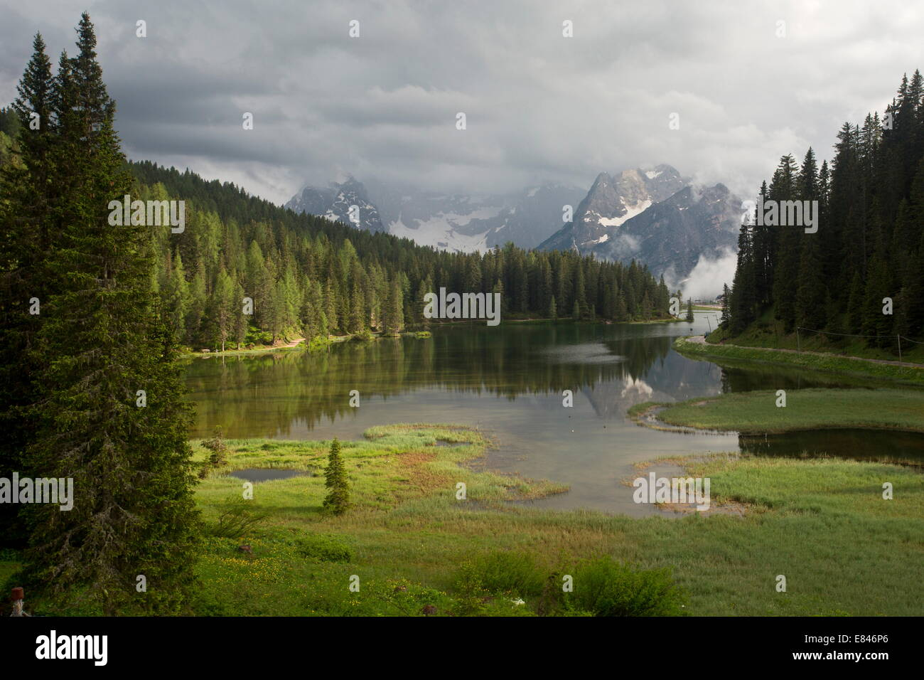 Lago di Misurina / Misurina lake, with marginal fen, looking towards the Sorapis group, evening light; Dolomites, - Stock Image