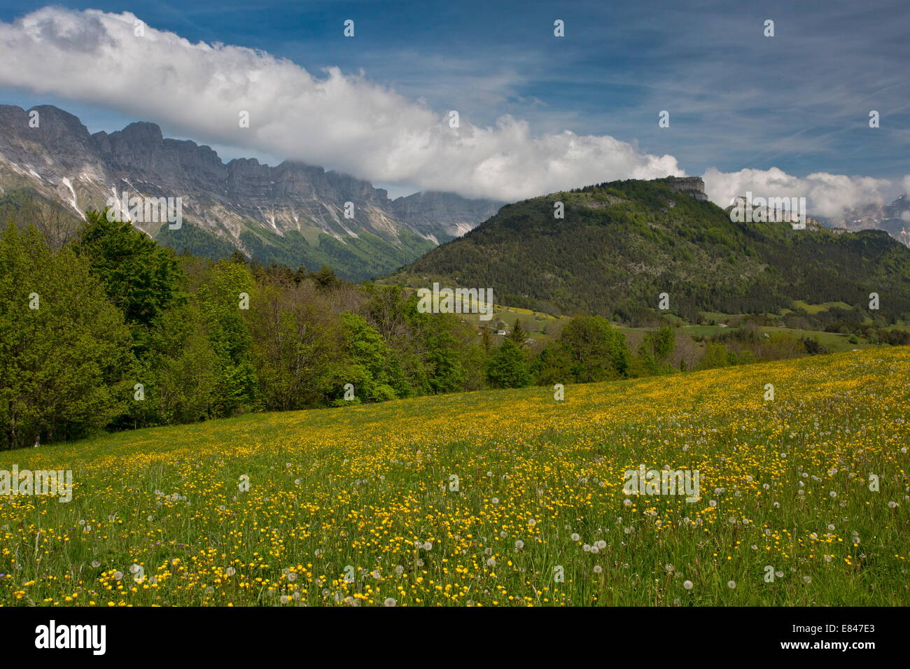 The eastern scarp of the limestone Vercors mountains, from Col de L'Allimas, east France. - Stock Image