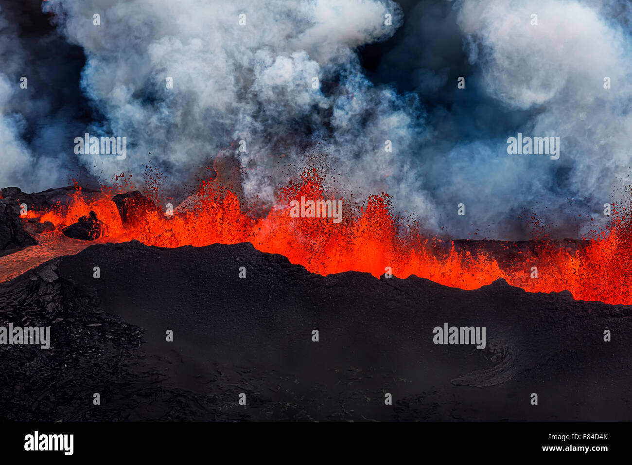 Lava fountains at Holuhraun Fissure eruption near the Bardarbunga Volcano, Iceland. - Stock Image