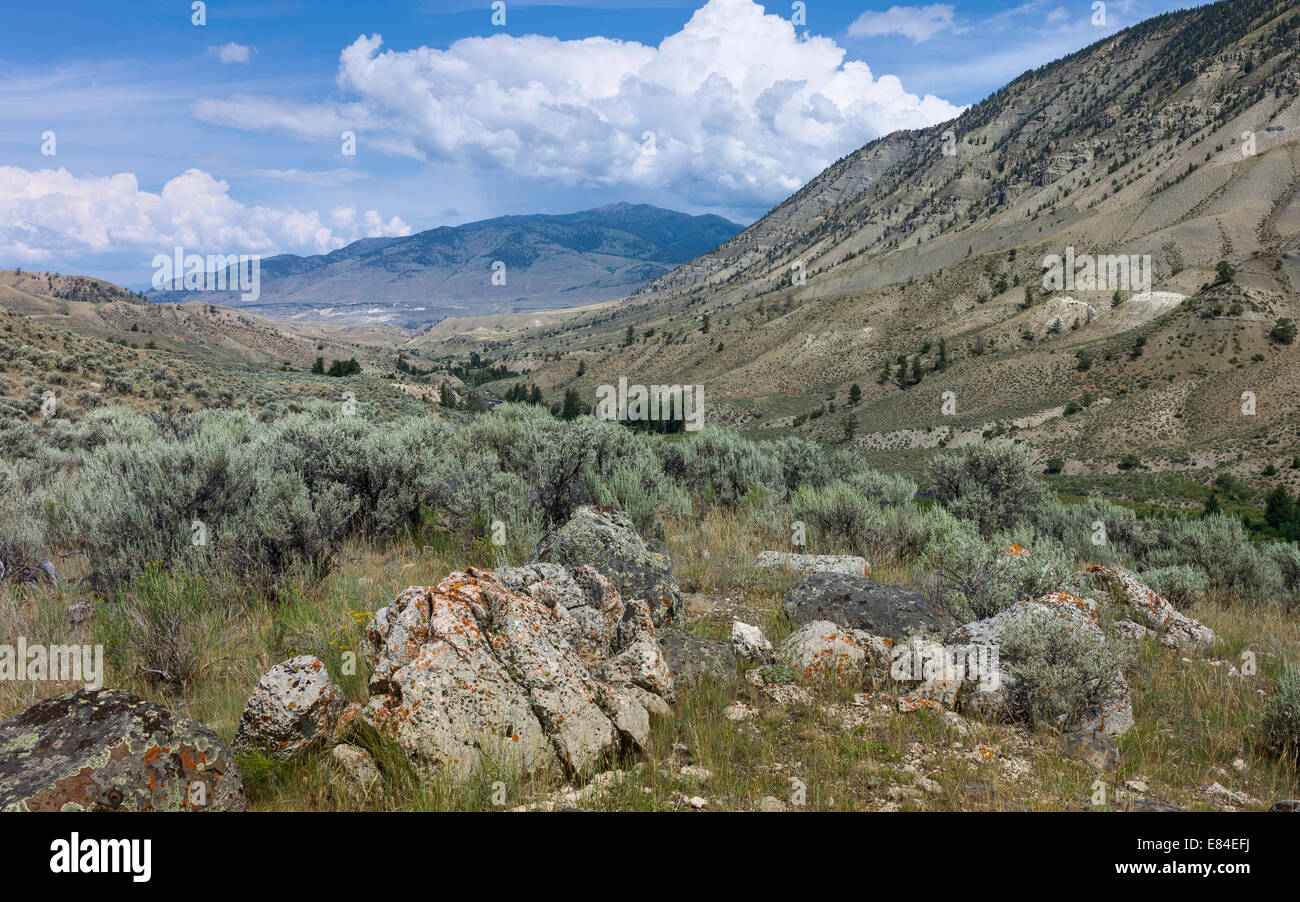 Yellowstone National Park on a bright sunny day showing mountains, the arid undulating landscape and bush land. - Stock Image