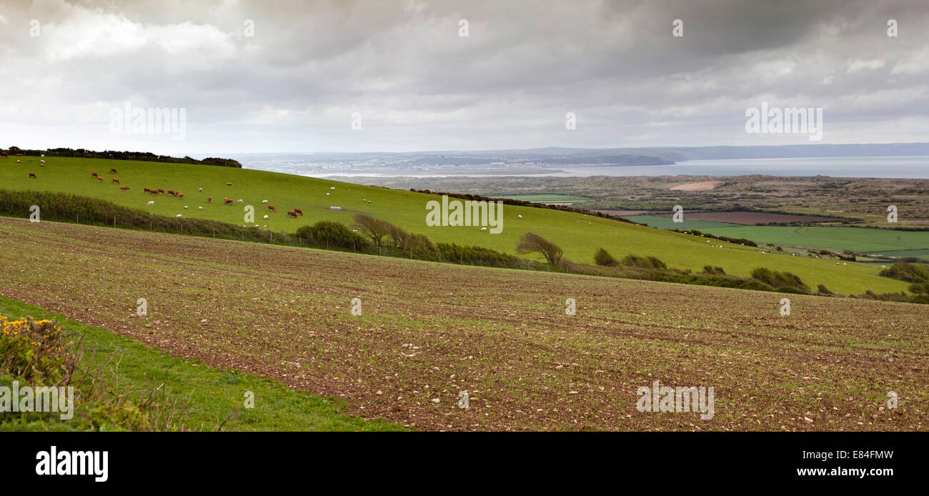 UK, England, Devon, Georgeham, view across farmland to the Bristol Channel, panoramic - Stock Image