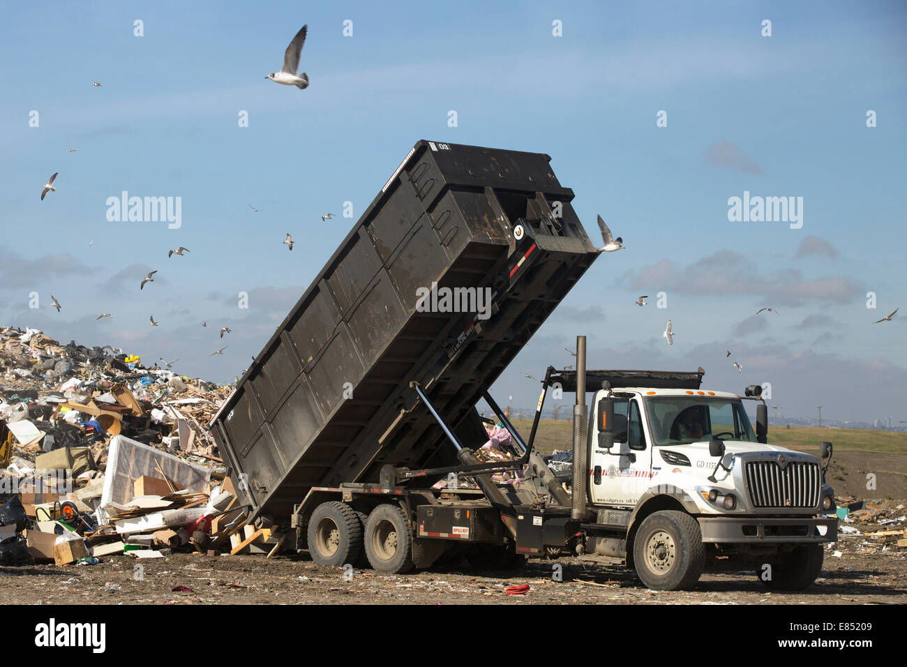 Truck dumping garbage in active landfill cell at Shepard Waste Management Facility. - Stock Image