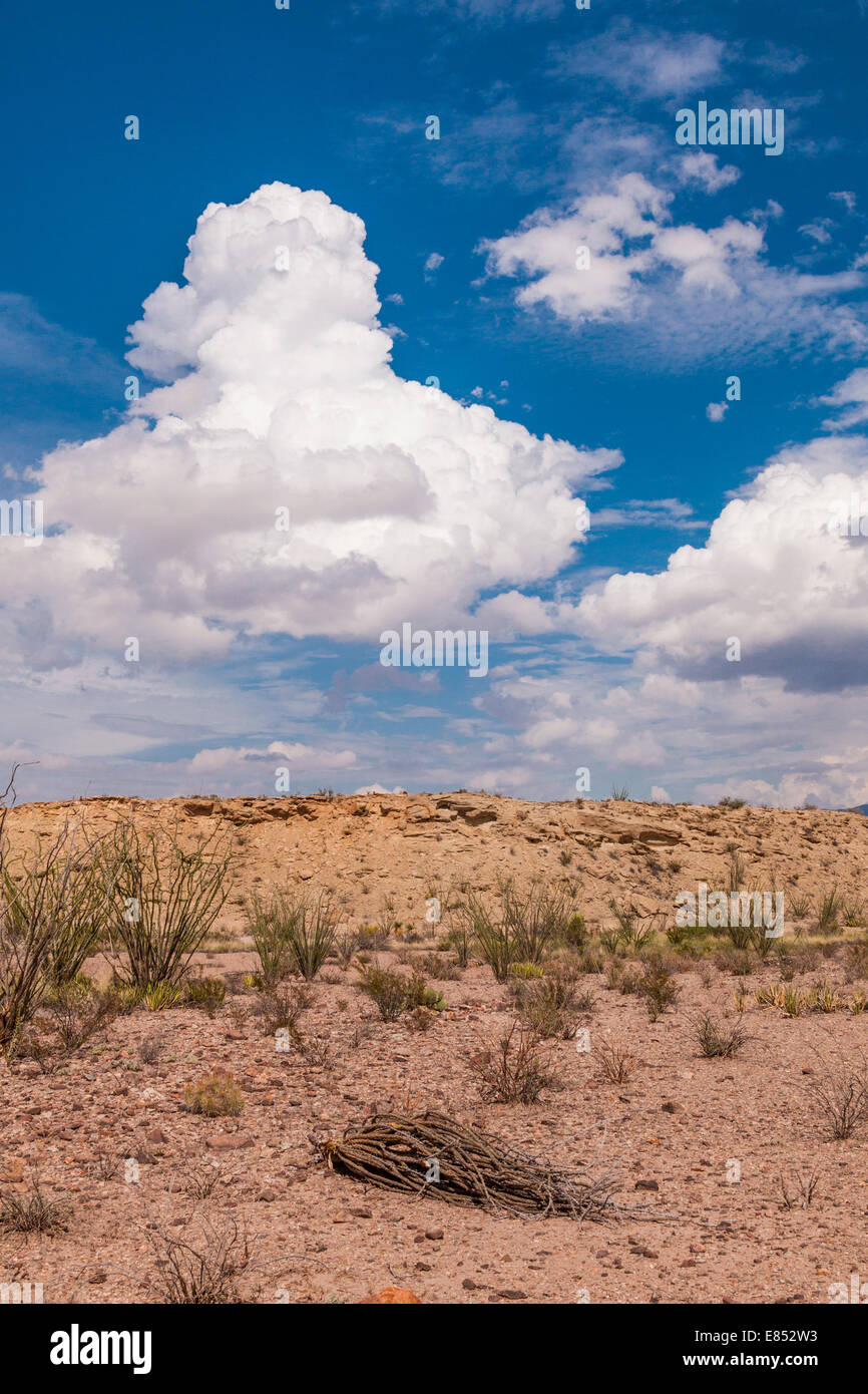 Clouds in desert in Big Bend National Park in Southwest Texas. Stock Photo