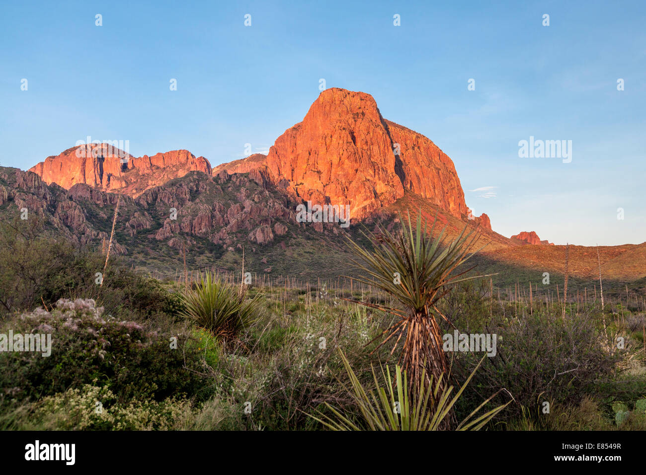 Glow from sunrise lights up the Chisos Mountains in Big Bend National Park. Stock Photo