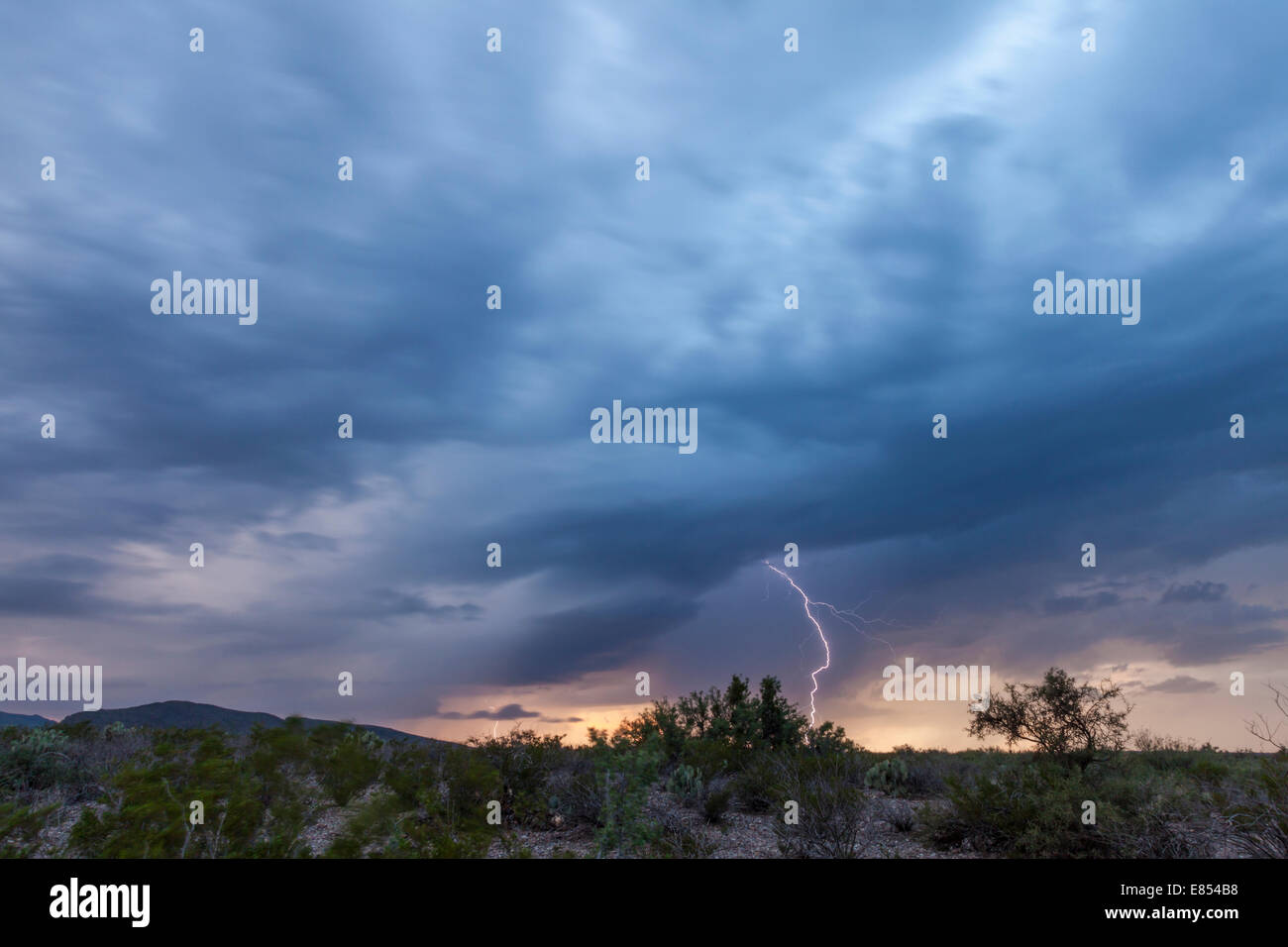 Storm clouds and Lightning strikes at Dugout Wells in Big Bend National Park. Stock Photo