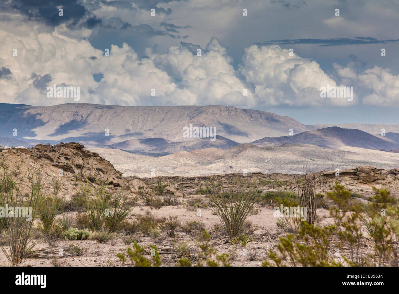 Storm clouds developing over desert in Big Bend National Park. Stock Photo