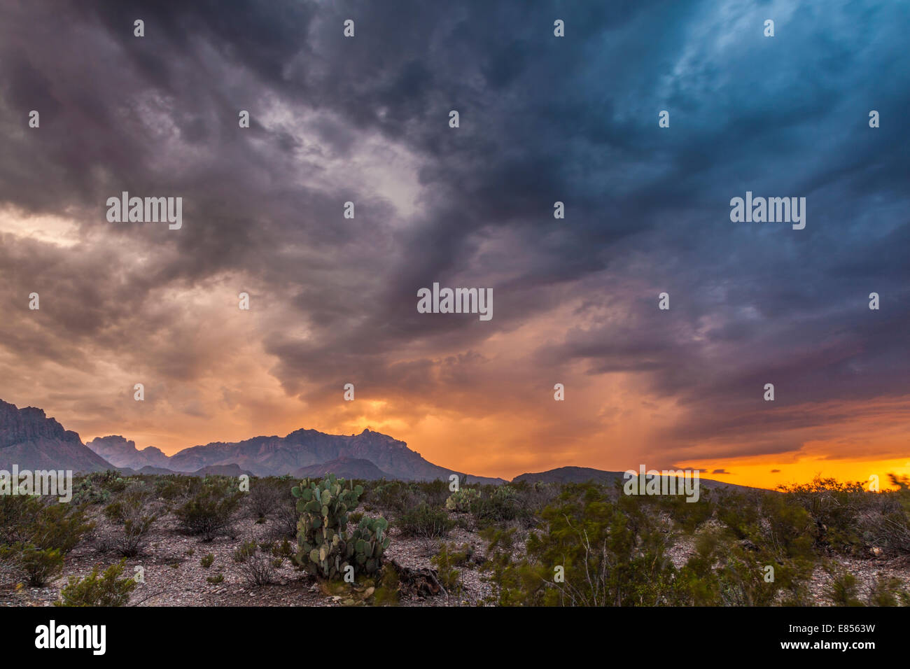Thuderstorm clouds over Chisos Mountains in Big Bend National Park. Stock Photo