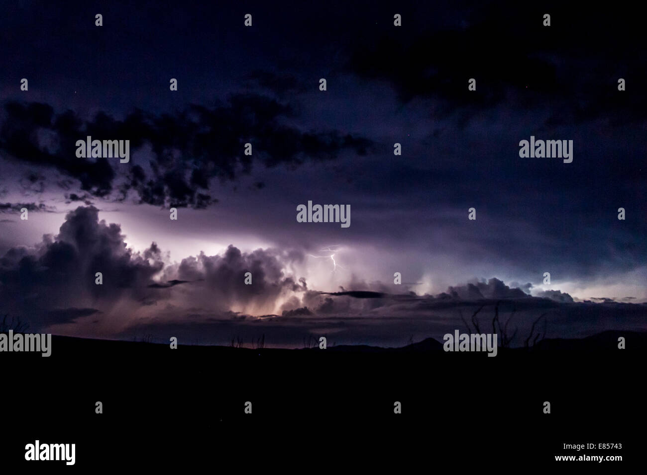Lightning and thunderstorm on horizon with stars in night sky above in Big Bend National Park in Texas. Stock Photo