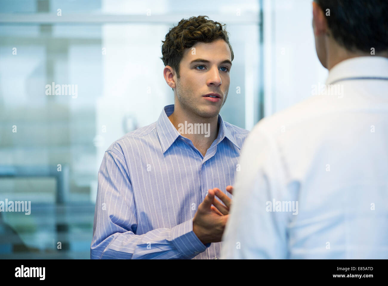 Business colleagues chatting in office - Stock Image