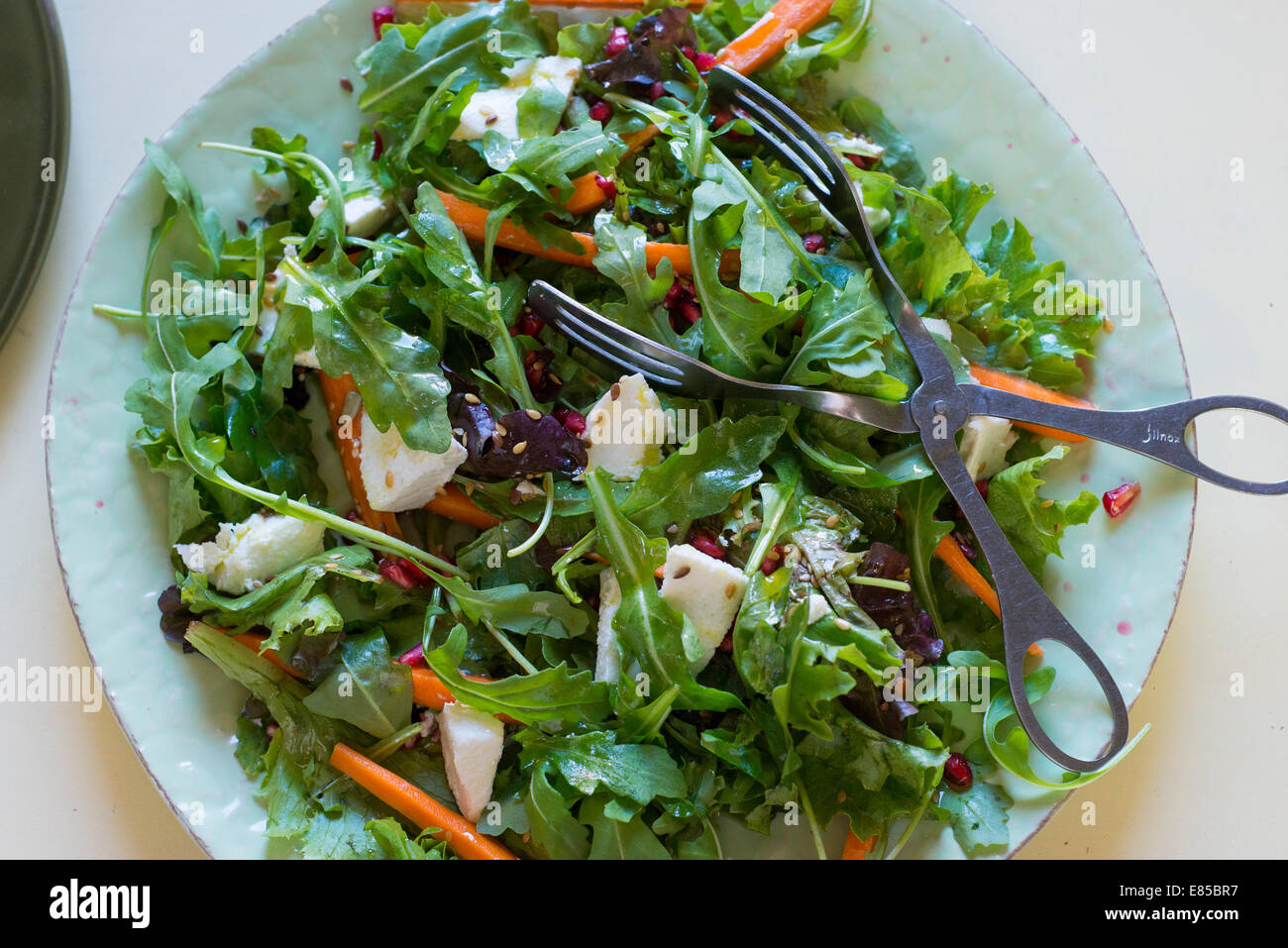 Rocket salad with, goats cheese, grated carrot, dressing and silver tongs. - Stock Image