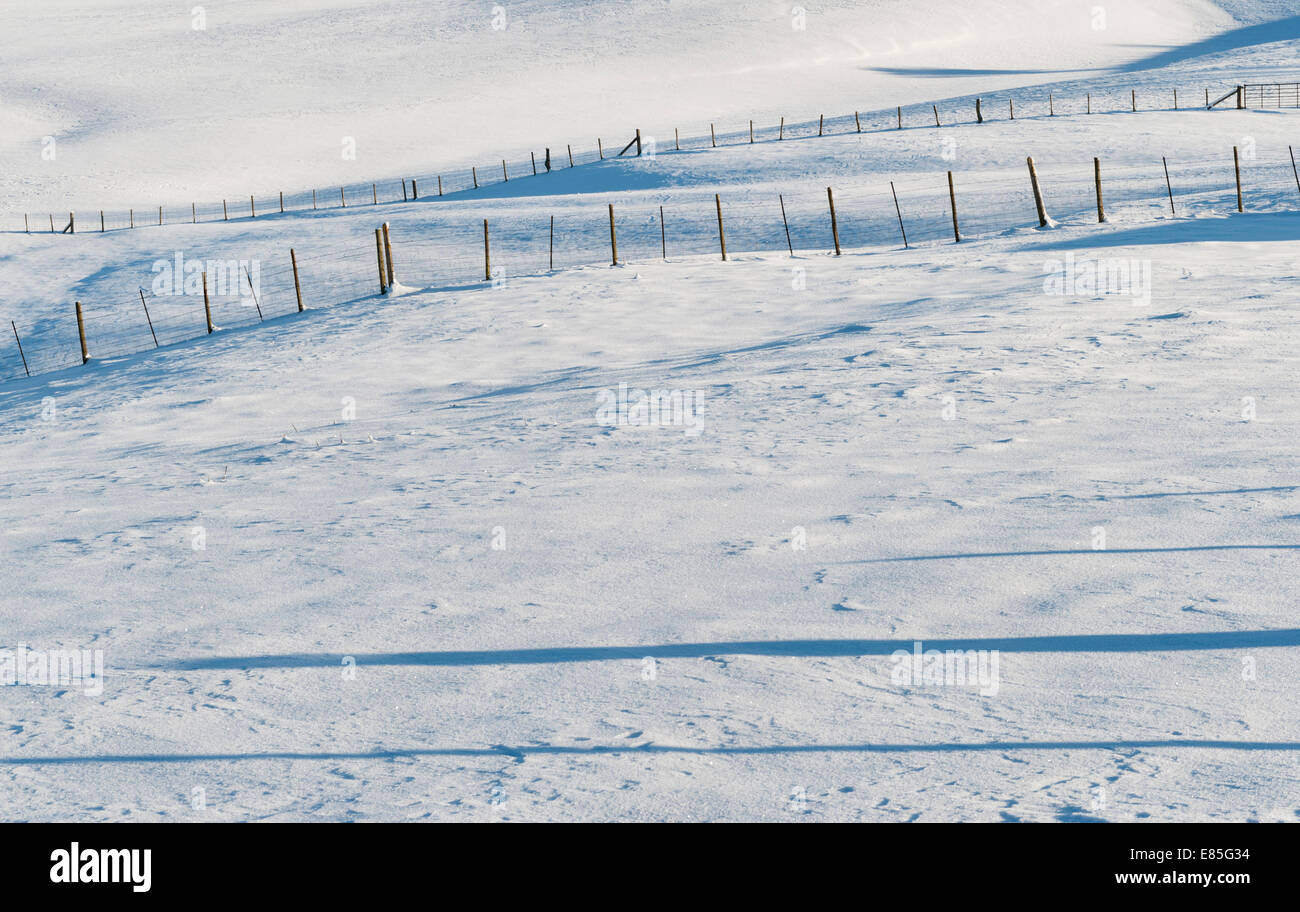 Fences and long shadows in a snowy winter landscape, Wales, UK - Stock Image
