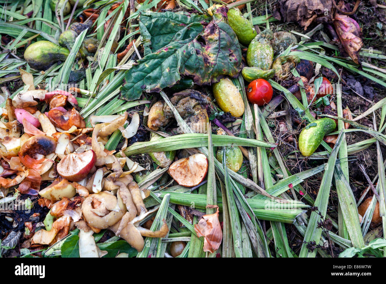 compost,compost heap,composting - Stock Image