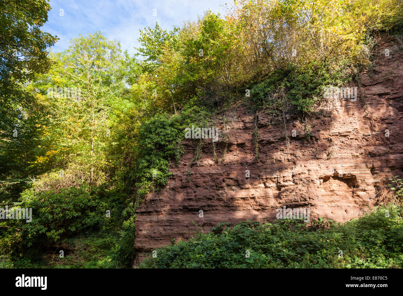 Triassic cliff face of mudstone, siltstone and sandstone at Colwick Cutting, a Site of Special Scientific Interest - Stock Image