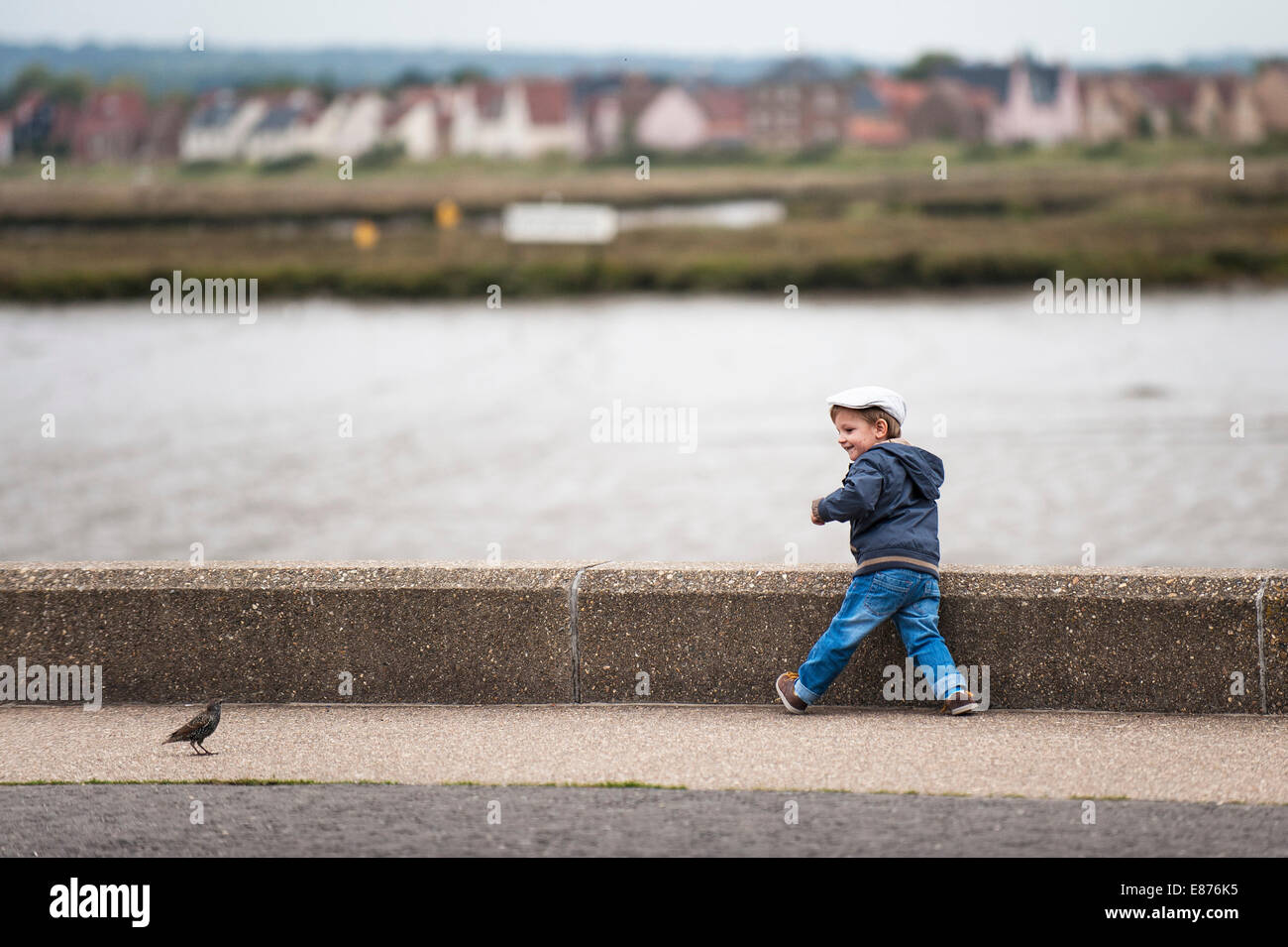 A toddler playing on the promenade wall on the Blackwater River in Essex. - Stock Image