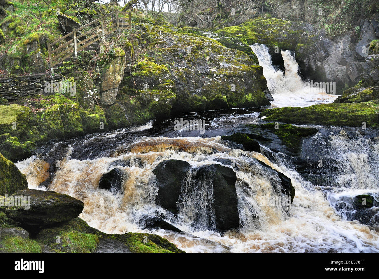 Rival Falls, near Ingleton, Yorkshire Dales, on the popular tourist trail-  the Ingleton waterfall walk - Stock Image